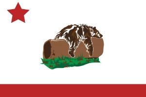 postkarten motiv bärenlaune